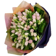 100pcs Holland Tulips Bouquet