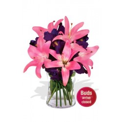 Iris and Pink Lily Vase Bouquet
